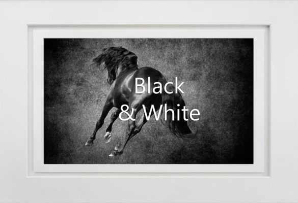 Black and White Art and Photographs for sale