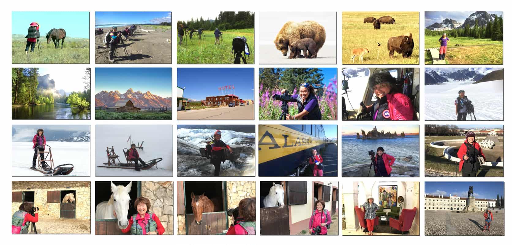Alaska,-US-Canada TRAVEL POSTCARD- Dr Zenaidy Castro