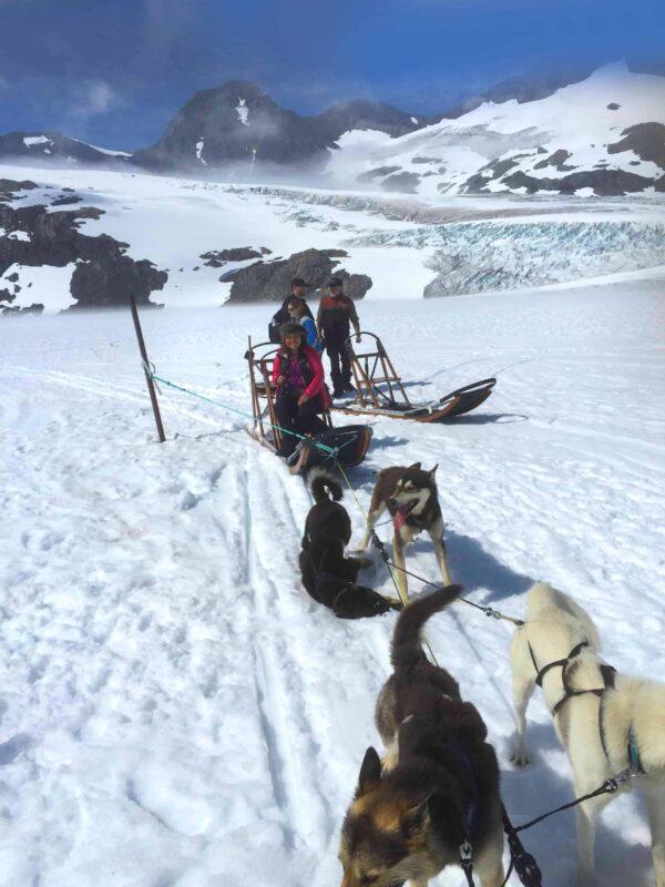 8. Best Alaska Dog Sledding Tours