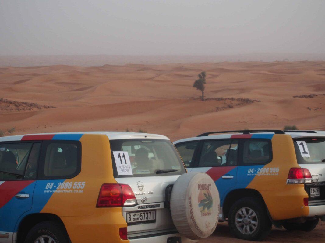 Arabian Adventures with Desert Safari in Dubai 12