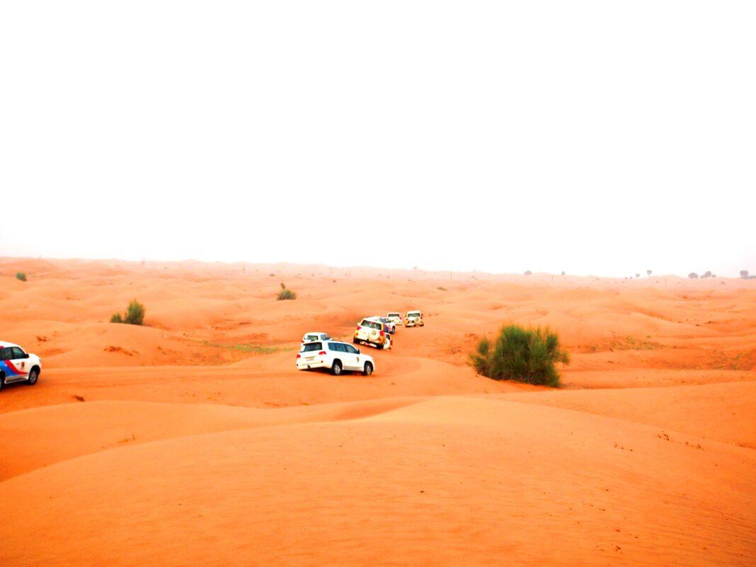 Arabian Adventures with Desert Safari in Dubai 13