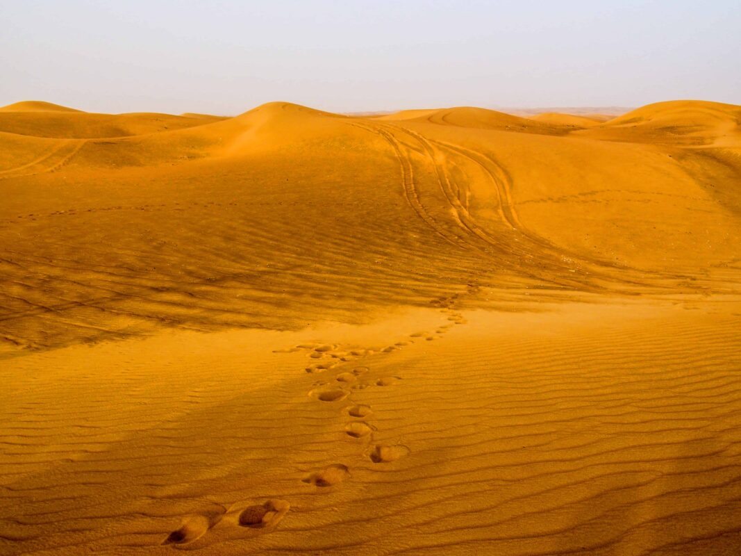 Arabian Adventures with Desert Safari in Dubai 2