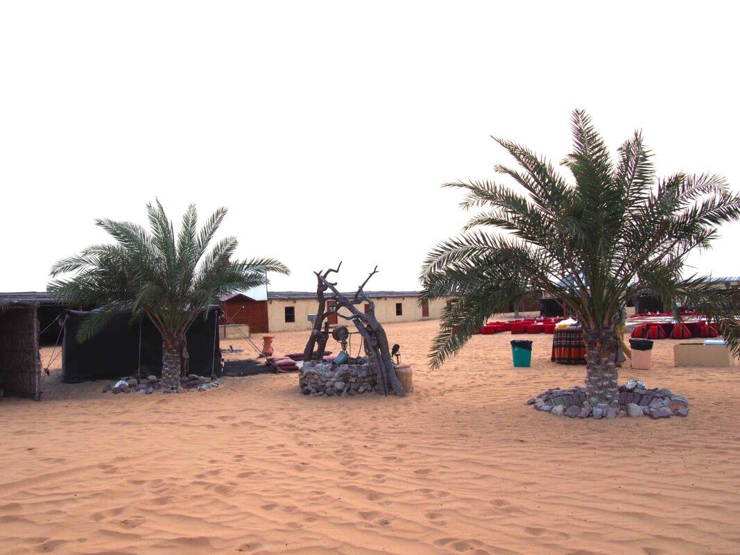 Arabian Adventures with Desert Safari in Dubai 20