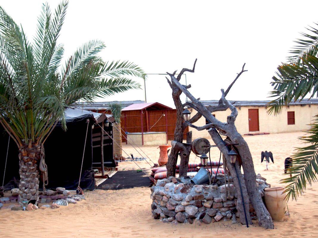 Arabian Adventures with Desert Safari in Dubai 21