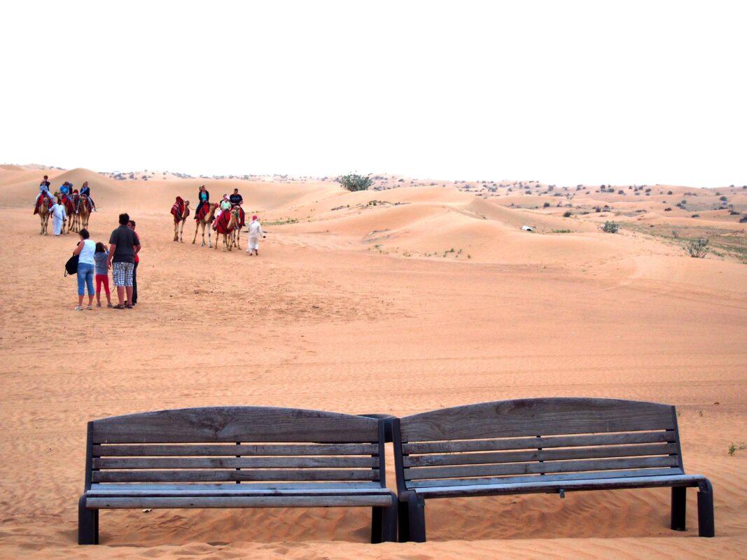 Arabian Adventures with Desert Safari in Dubai 28