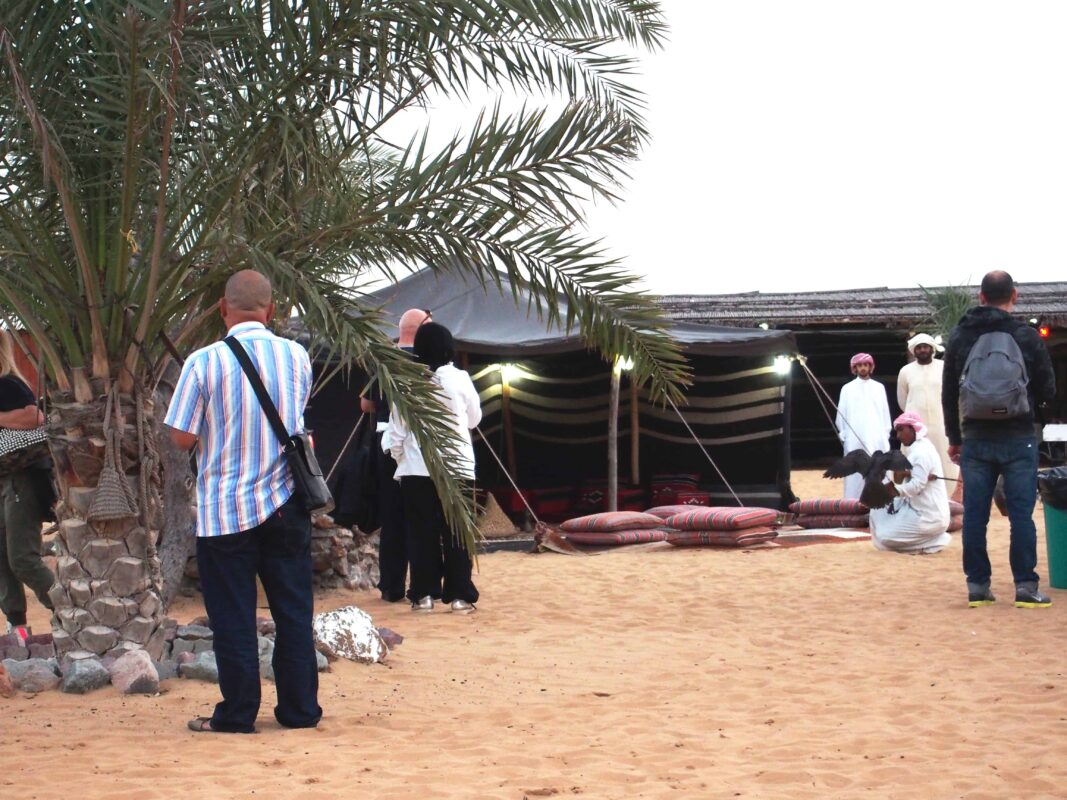 Arabian Adventures with Desert Safari in Dubai 38