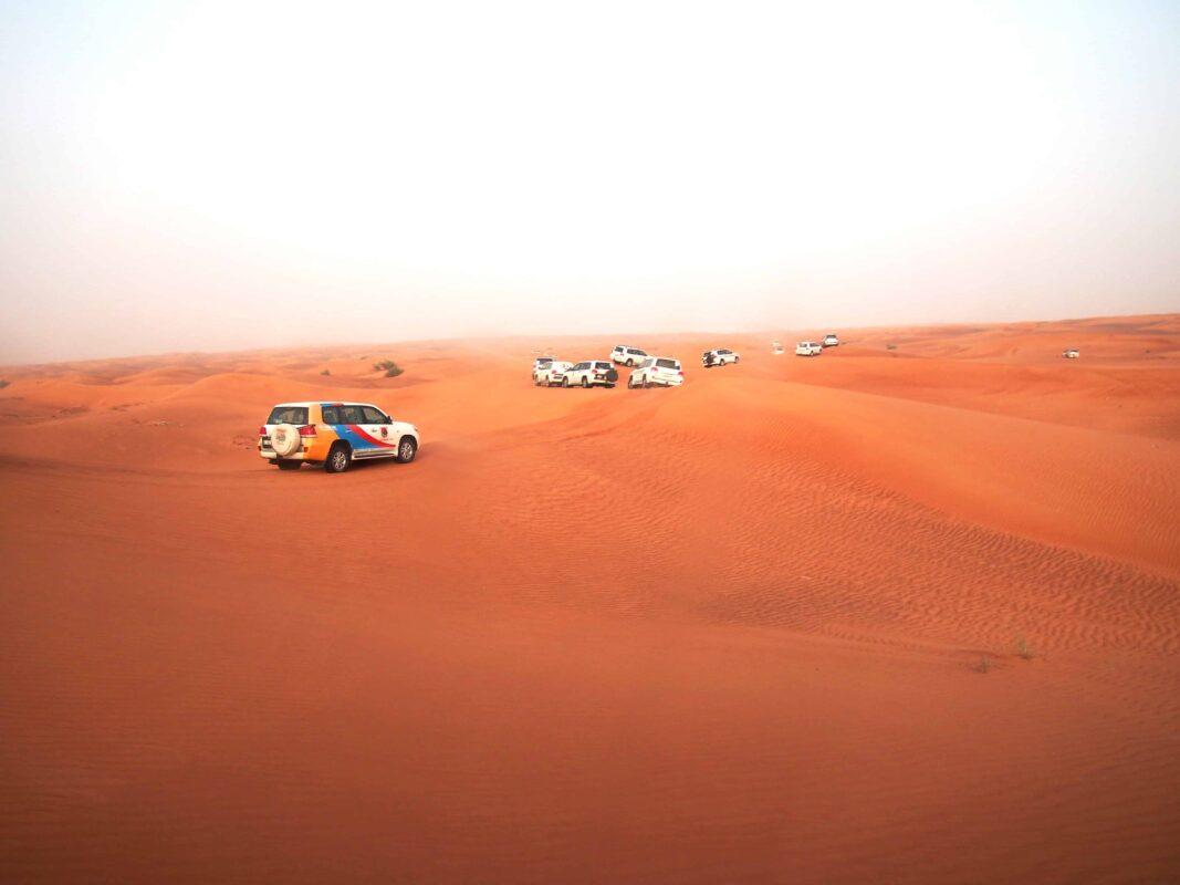 Arabian Adventures with Desert Safari in Dubai 6