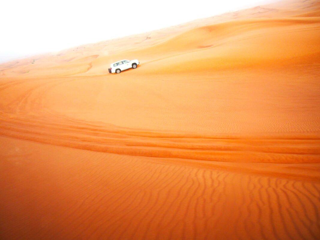 Arabian Adventures with Desert Safari in Dubai 7