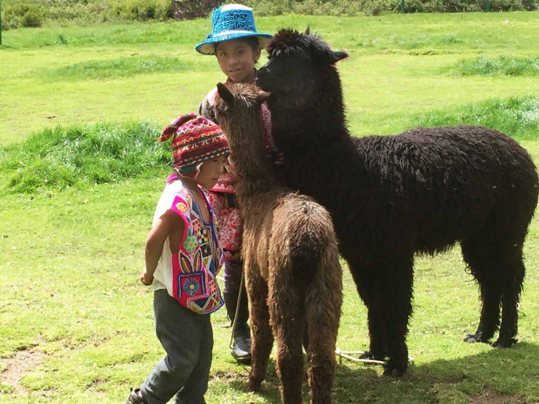 Cusco to Puno Peru Travel by Bus 11 1