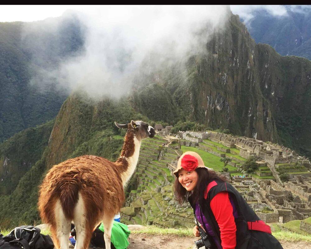 DR ZENAIDY CASTRO and The Llamas of Machu Picchu 19
