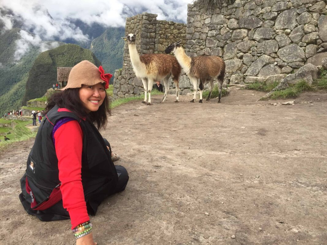DR ZENAIDY CASTRO and The Llamas of Machu Picchu 24