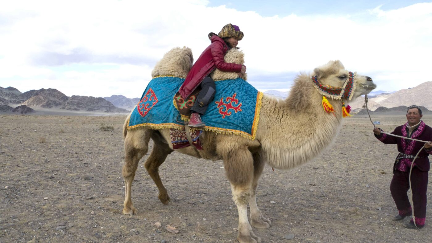 Dr Zenaidy Castri in CAMEL RIDE Mongolia 2