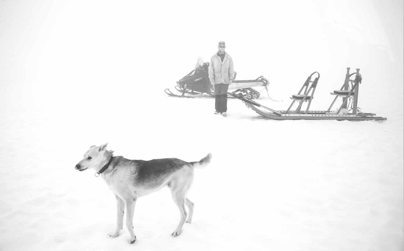 Glacier Dog sled Alaska Black and White Photography 2