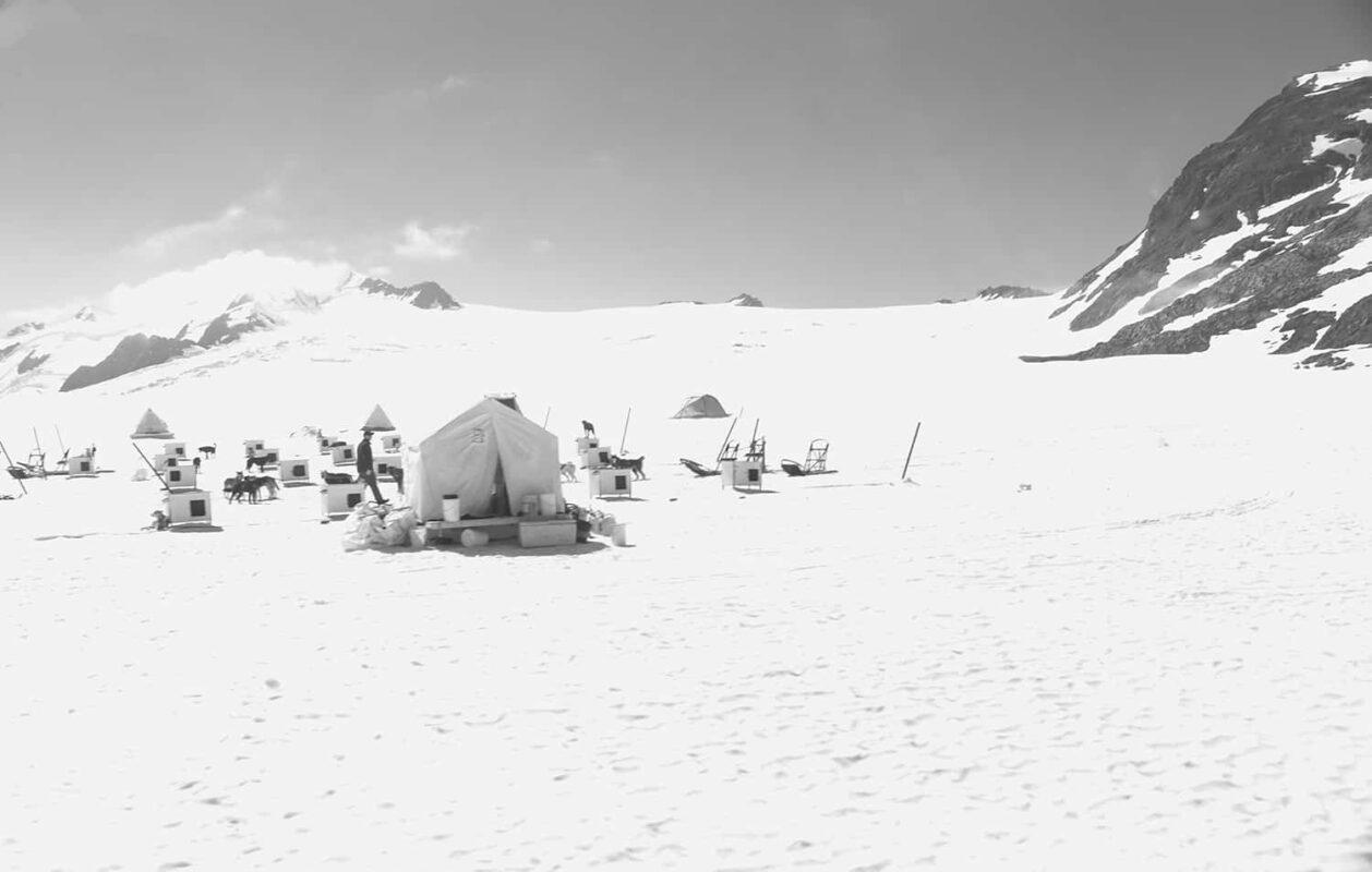 Glacier Dog sled Alaska Black and White Photography 20