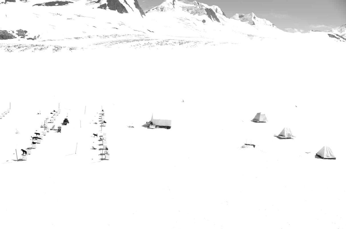 Glacier Dog sled Alaska Black and White Photography 21