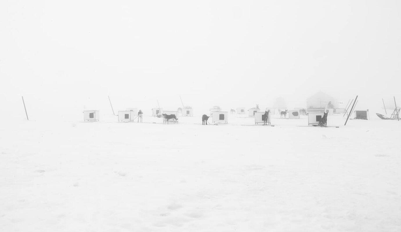 Glacier Dog sled Alaska Black and White Photography 4