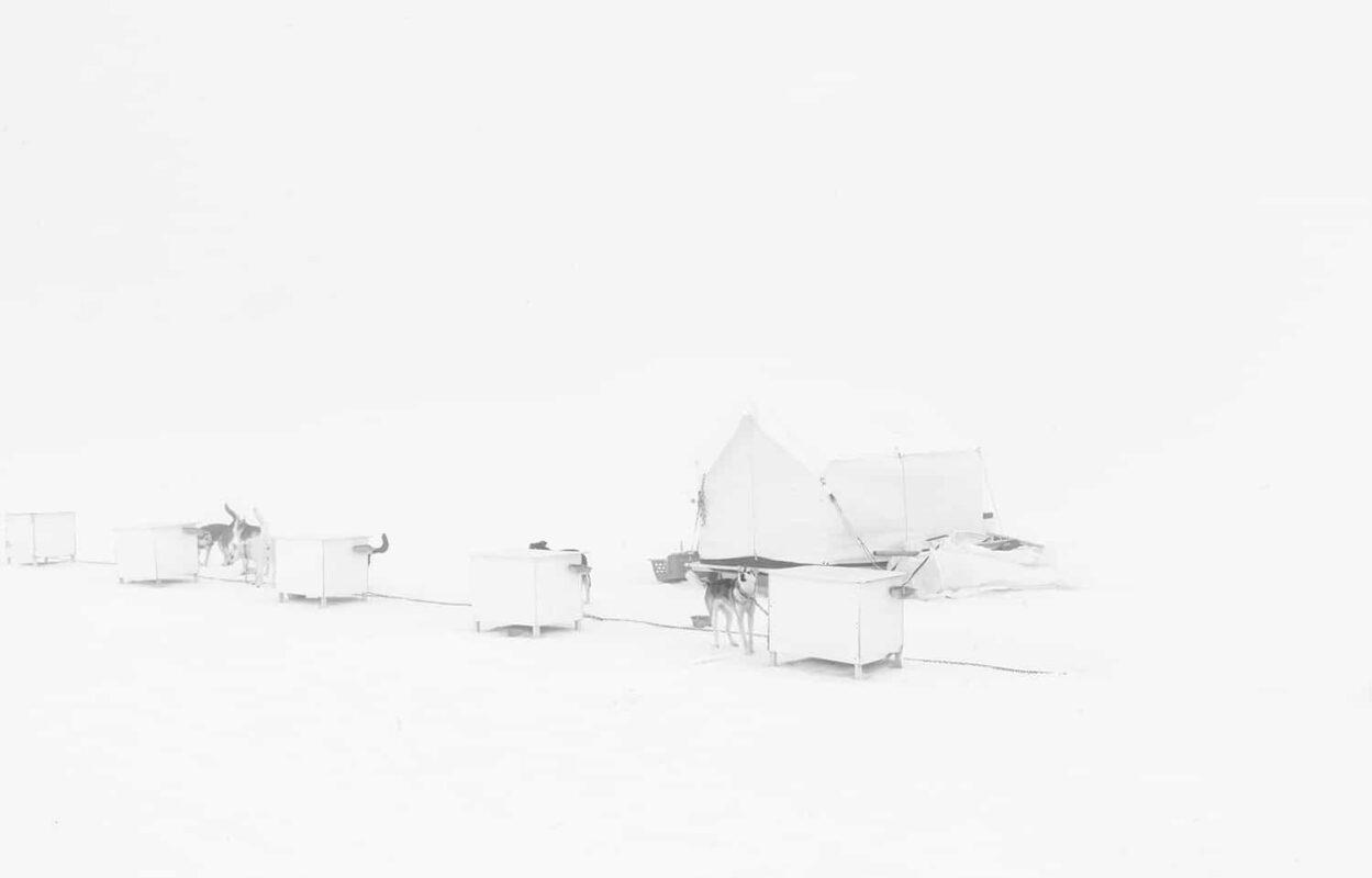 Glacier Dog sled Alaska Black and White Photography 5
