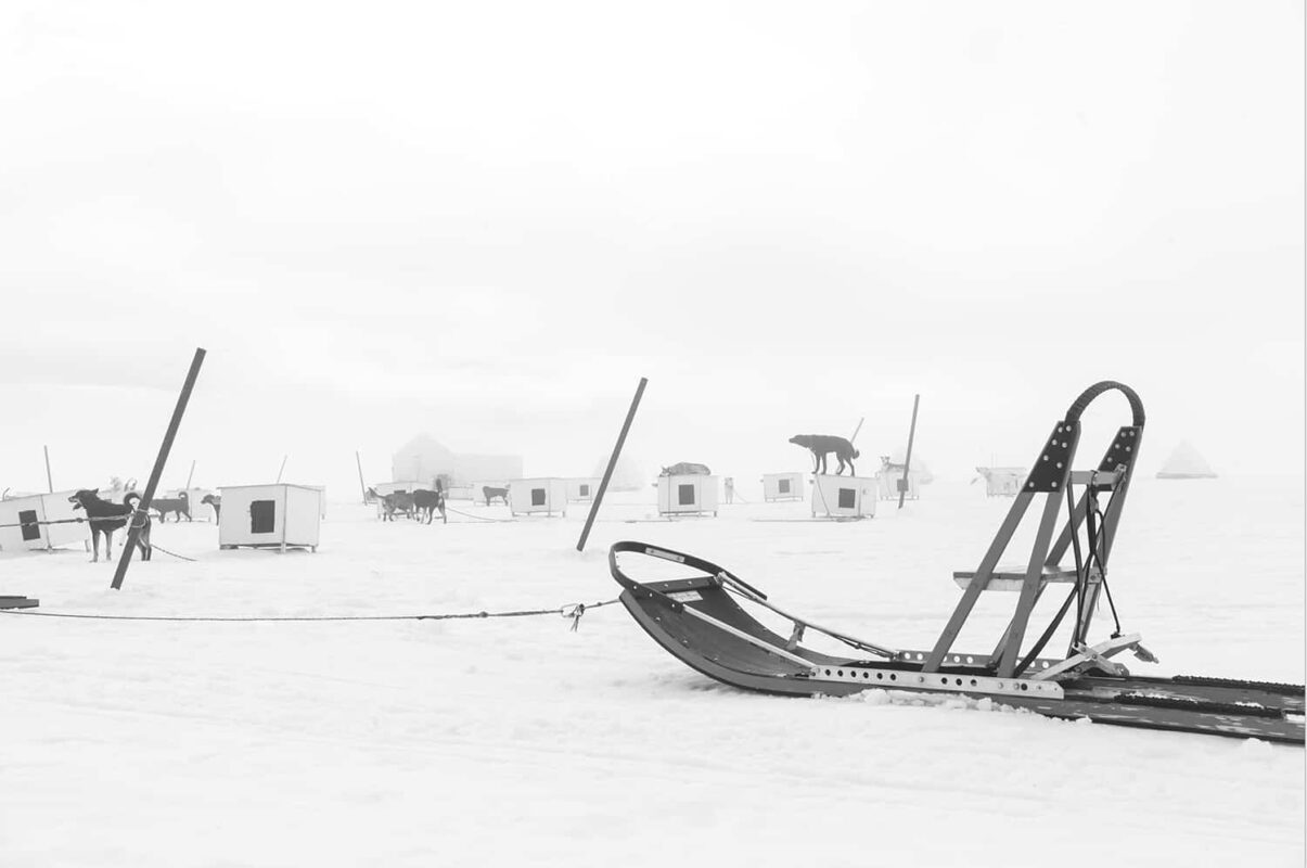 Glacier Dog sled Alaska Black and White Photography 9