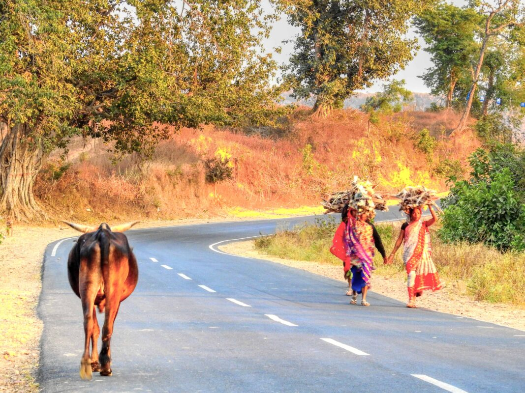 Gond Tribe of Central India famous street photographer Dr Zenaidy Castro 16