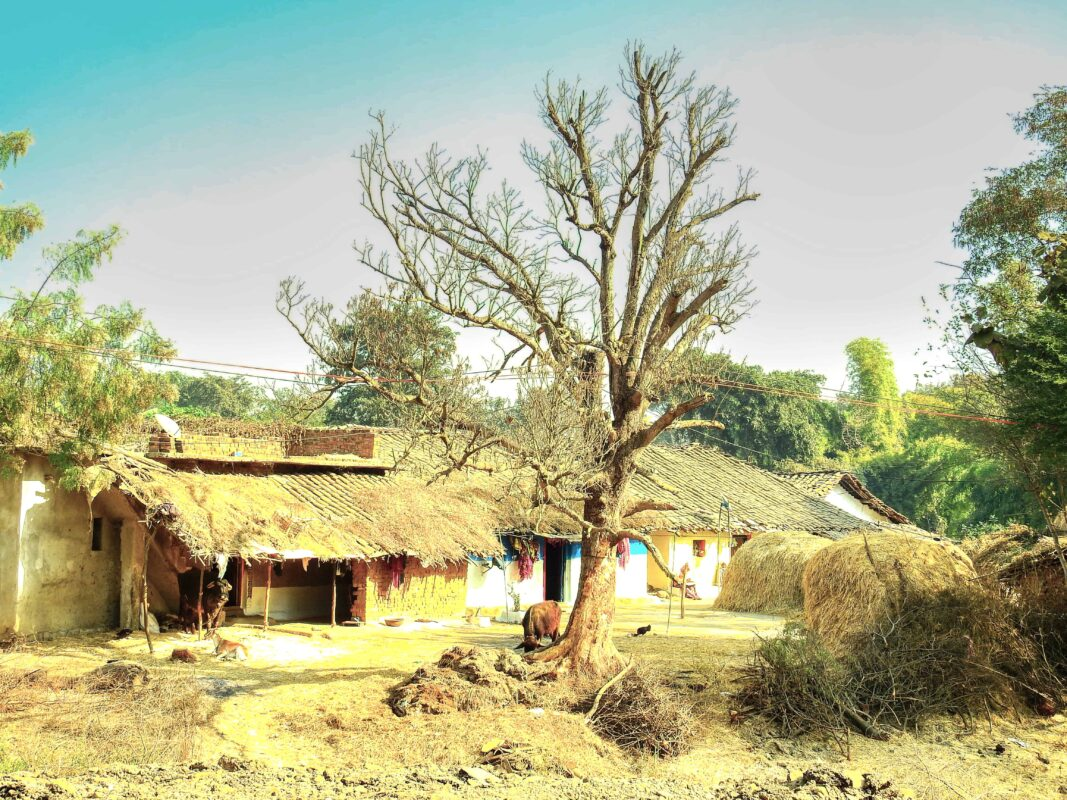 Gond Tribe of Central India famous street photographer Dr Zenaidy Castro 26