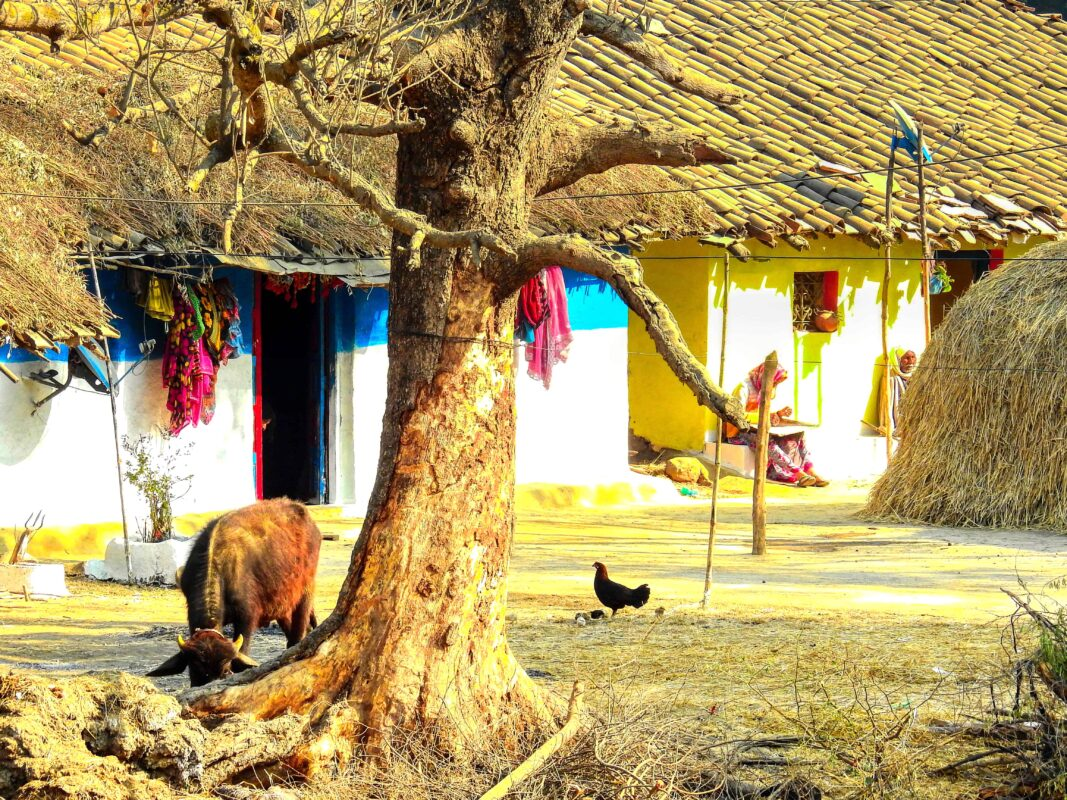 Gond Tribe of Central India famous street photographer Dr Zenaidy Castro 27