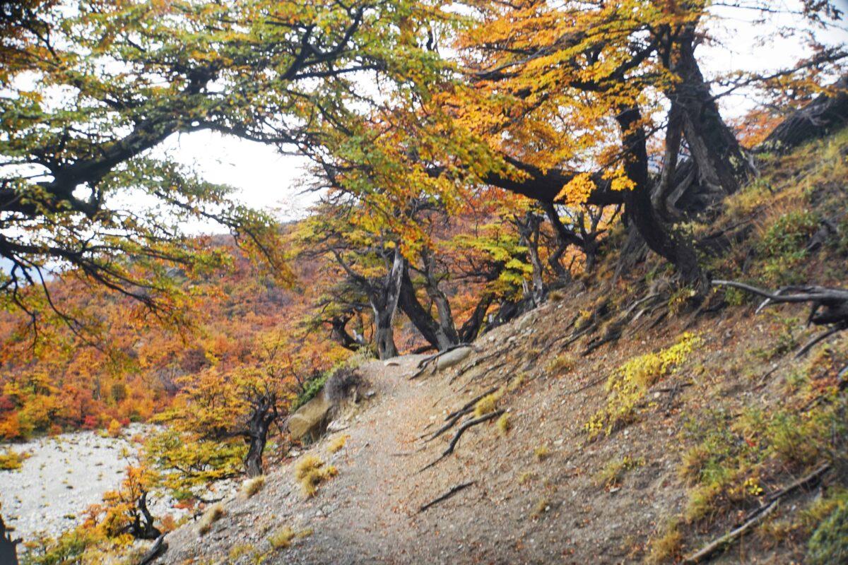Hiking in El Chalten Mount Fitz Roy Patagonia 10