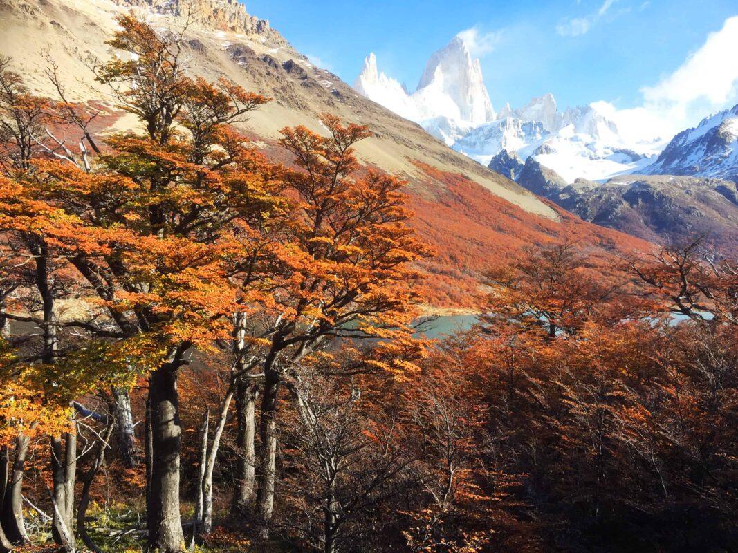 Hiking in El Chalten Mount Fitz Roy Patagonia 24