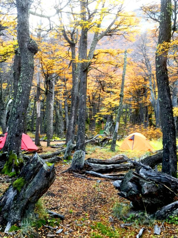 Hiking in El Chalten Mount Fitz Roy Patagonia 26