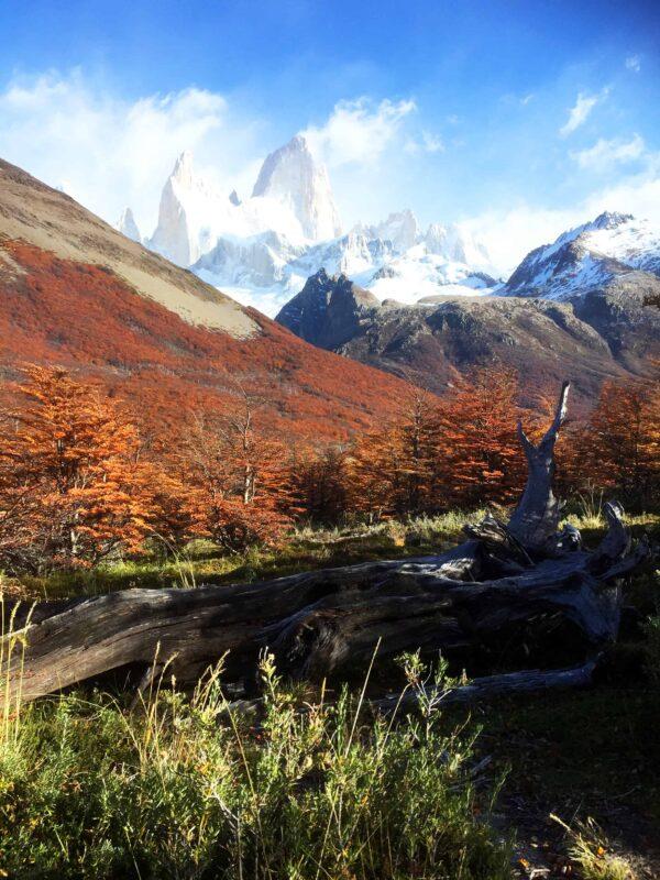 Hiking in El Chalten Mount Fitz Roy Patagonia 43