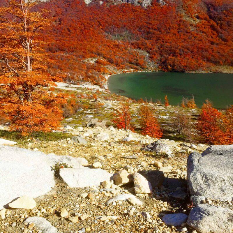 Hiking in El Chalten Mount Fitz Roy Patagonia 45