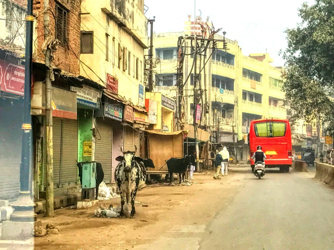 India Street Photography FAMOUS street photographer Dr Zenaidy Castro 27 2