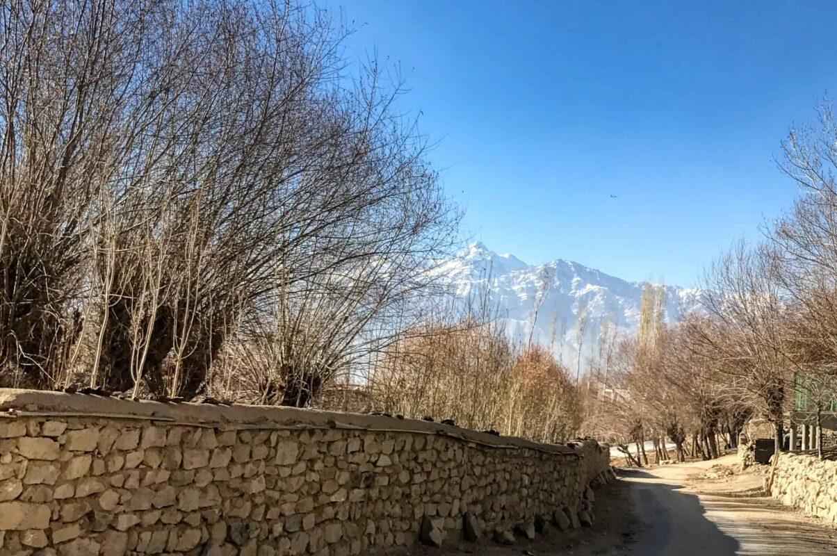Leh Ladakh travel India 10