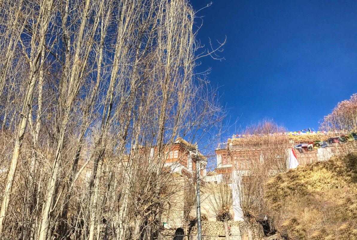 Leh Ladakh travel India 11