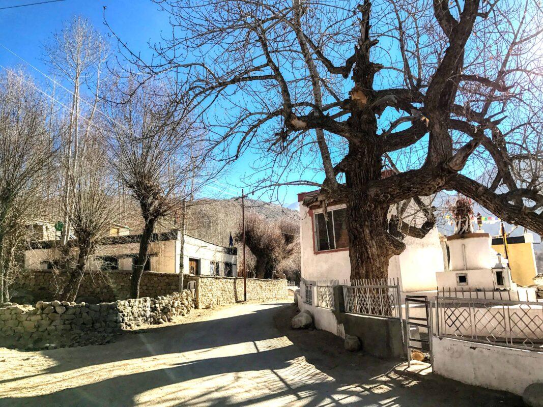 Leh Ladakh travel India 12
