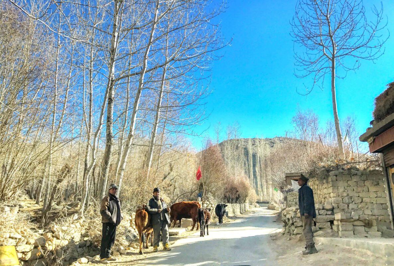 Leh Ladakh travel India 13