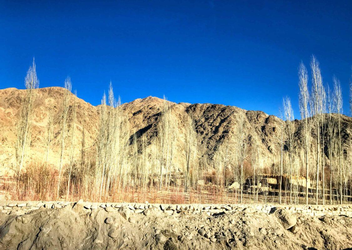 Leh Ladakh travel India 19