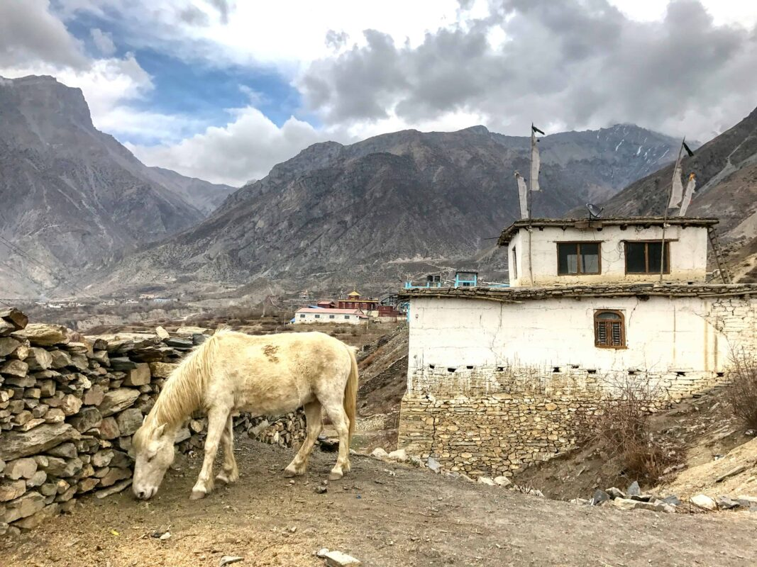 Lower Mustang Nepal travel 45