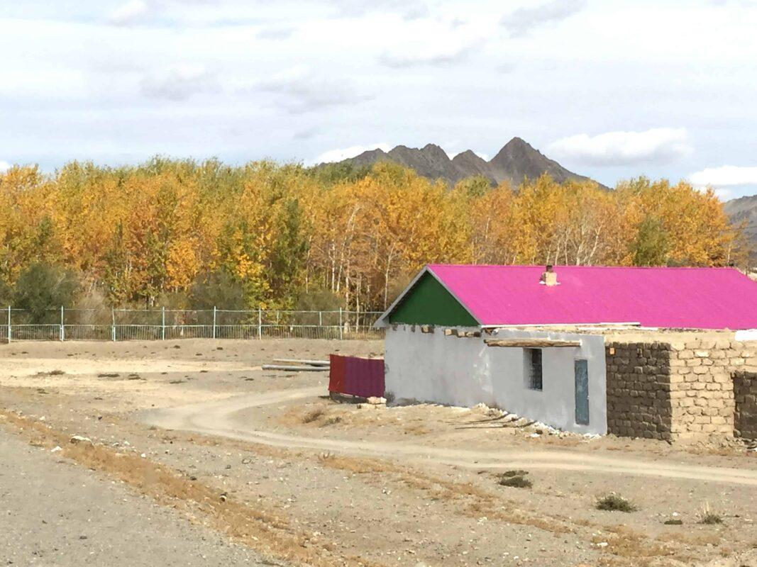 Mongolia Olgii province Naadam festival 16