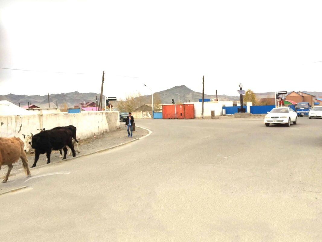 Mongolia Olgii province Naadam festival 34