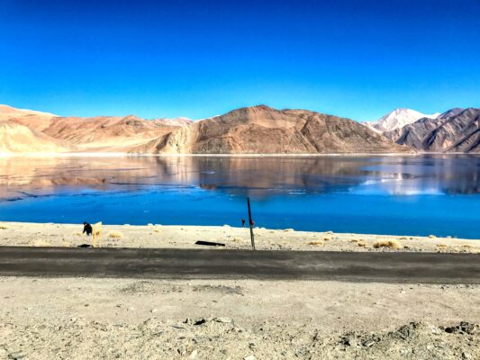 Road Trip from Leh to Pangong Lake Ladakh India travel 30