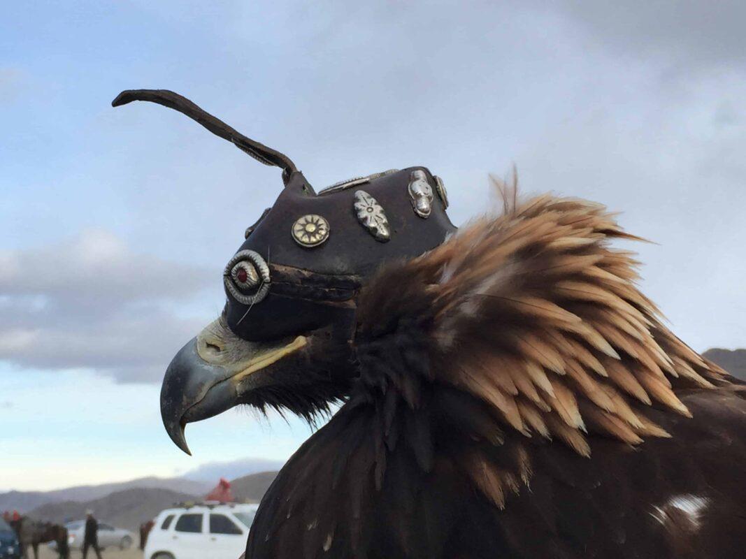 TRAVEL VISUAL DIARY EAGLE HUNTERS INSIDE NAADAM FESTIVAL 32