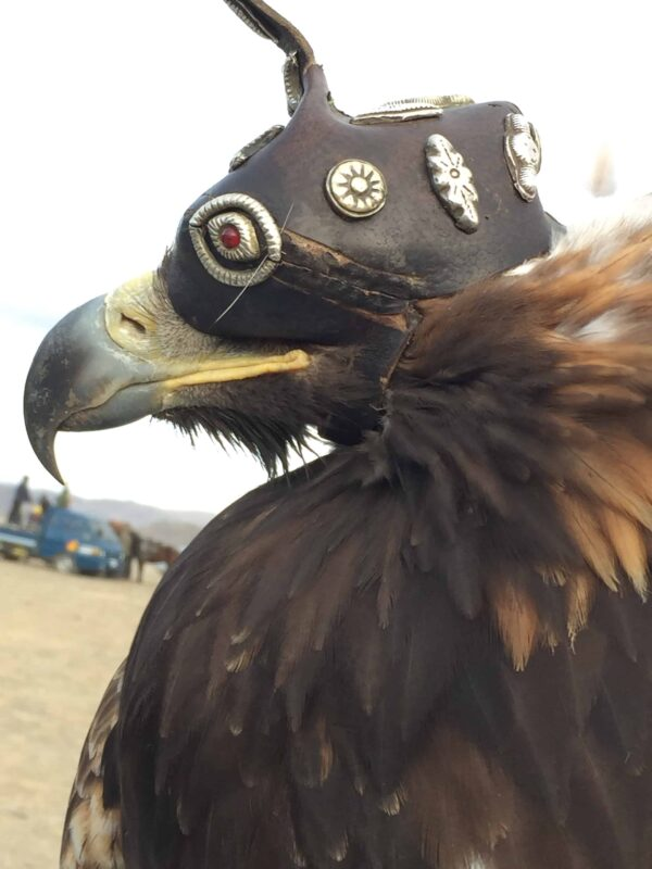 TRAVEL VISUAL DIARY EAGLE HUNTERS INSIDE NAADAM FESTIVAL 60