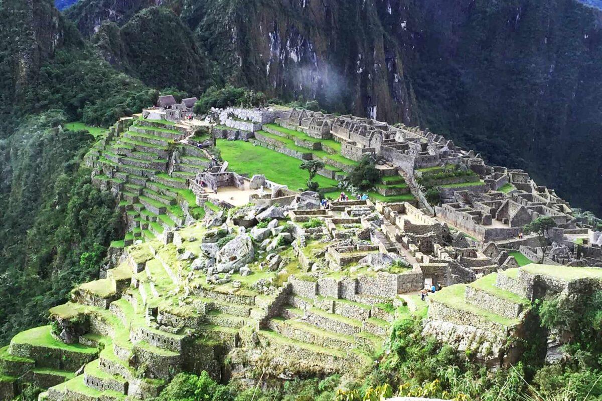 The Llamas of Machu Picchu 14