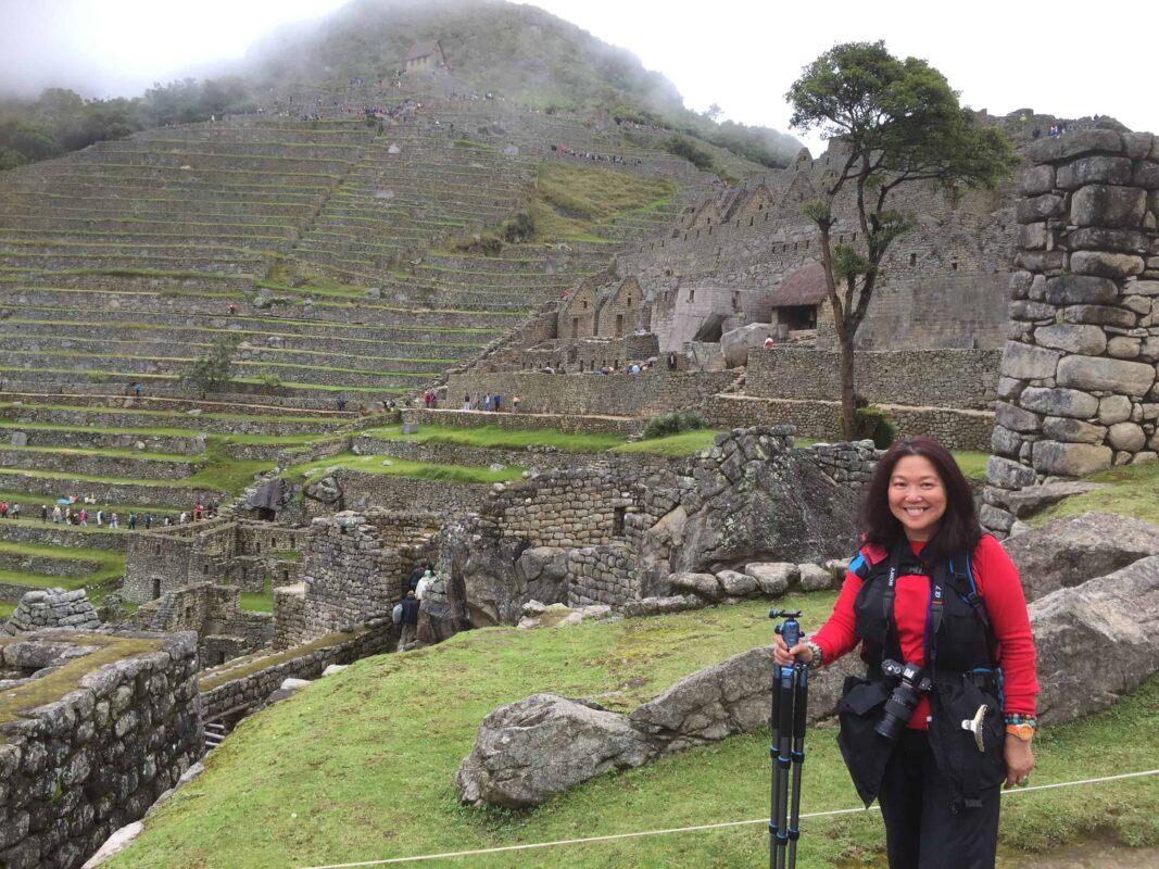 The Llamas of Machu Picchu 5