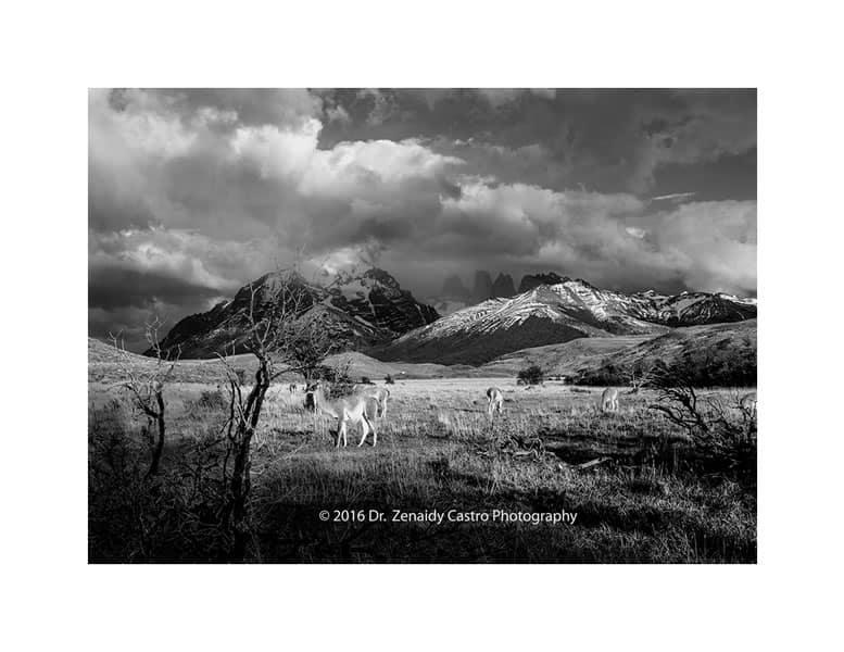 Trekking Patagonia walking beyond comfort zone 7